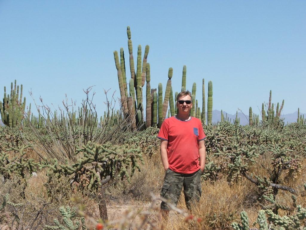 Podróż do Meksyku, kaktusy