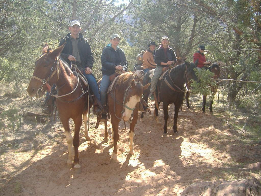 Amerykański muł, przejażdżka w Zion National Park