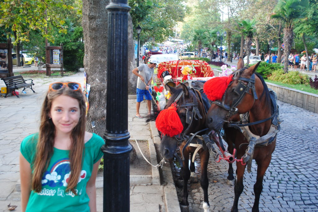 Wycieczka do Bułgarii, konie