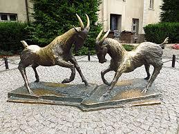 Koza i kozie mleko, koziołki w Poznaniu