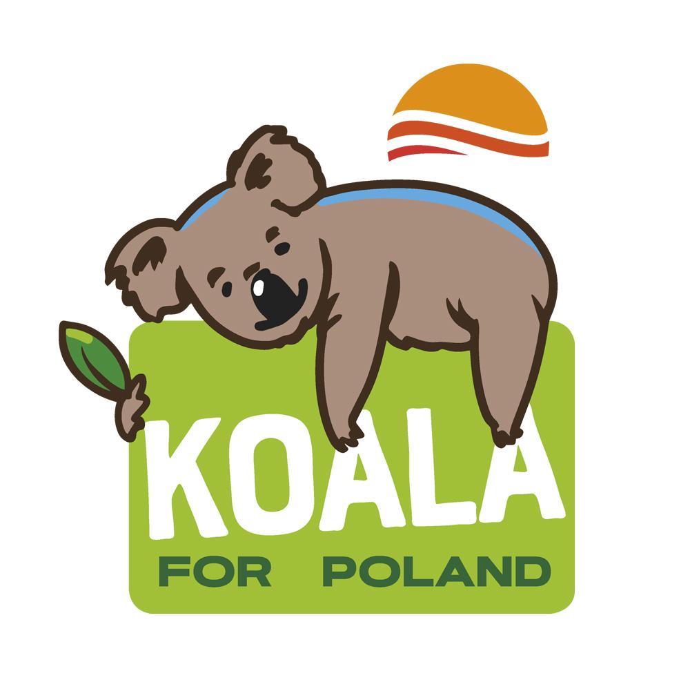 Australijska koala, koala for Poland