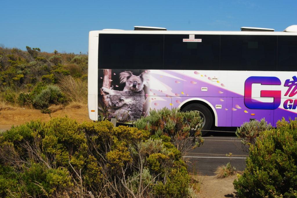 Wyprawa na Great Ocean Road, wszędobylskie autobusy
