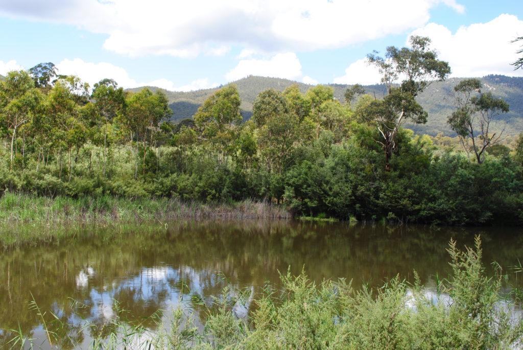 Canberra stolica Australii, Tidbinbilla National Park