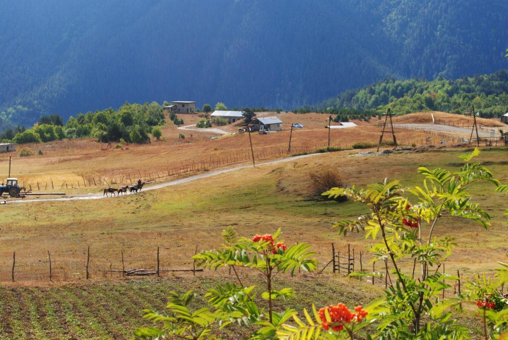 Podróż do Gruzji. Widok z naszego domku niedaleko Omalo.