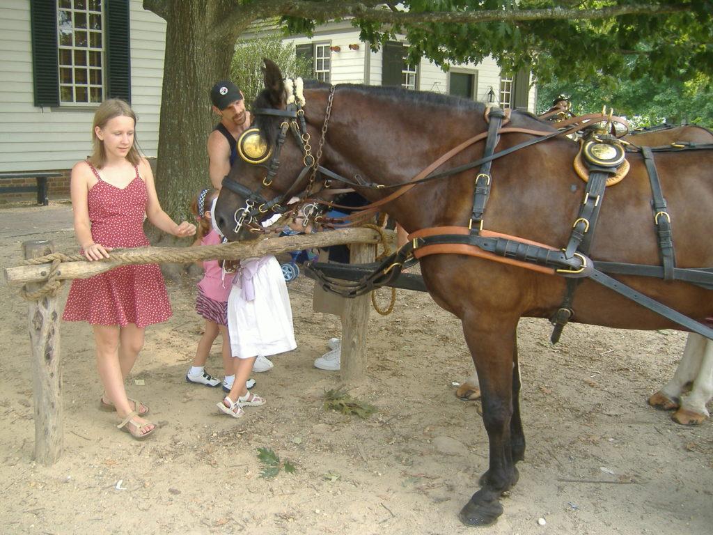 Stan Wirginia. Konie mile widziane.
