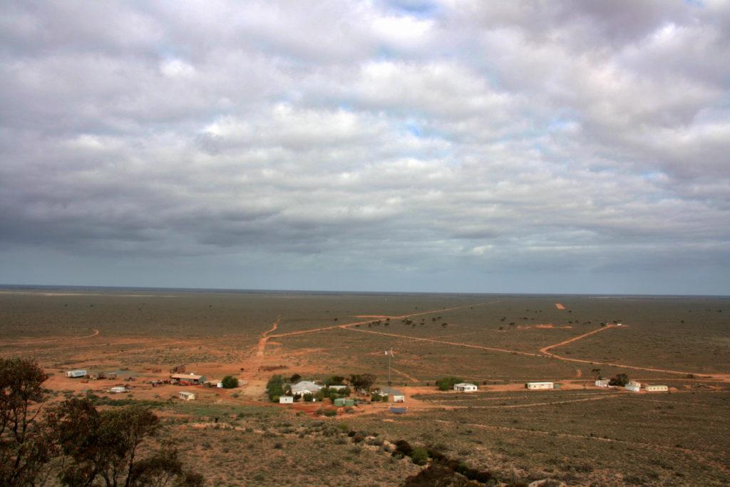 Hodowla bydła w Australii. Farma bydła.