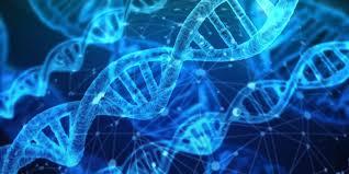 Kwas DNA. Nici DNA.