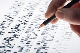 Kwas DNA. Znakowanie genów.